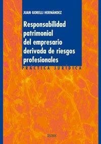 9788430943616: Responsabilidad patrimonial del empresario derivada de riesgos profesionales/ The Inheritated Responsibility of the Employer derivative of personal Risks (Spanish Edition)