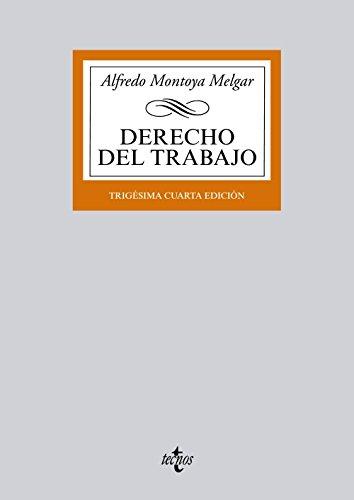 9788430958917: Derecho del trabajo / Labour law (Spanish Edition)