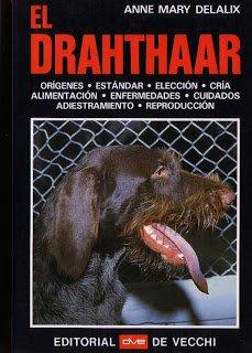 9788431505615: EL DRAHTHAAR