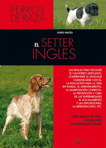 9788431515324: El Setter Ingles (Spanish Edition)