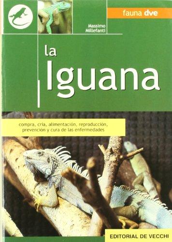 9788431521042: La iguana (Animales)
