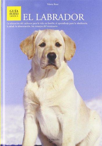 9788431524272: Labrador, el (Guia Fotografica)