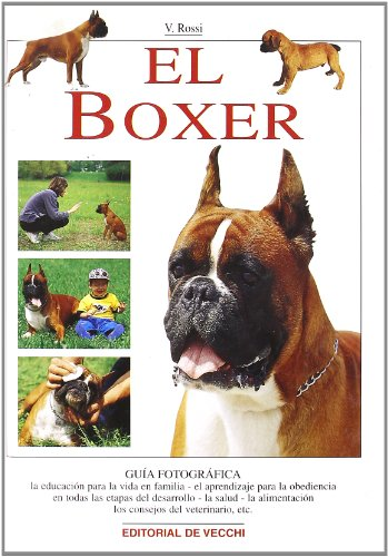 El Boxer (Spanish Edition): Rossi, Valeria