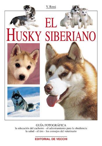 9788431526283: El husky siberiano (Animales)