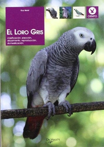 9788431529437: El loro gris (Spanish Edition)