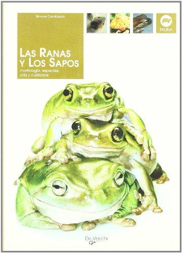 9788431529567: Las ranas y los sapos (Animales)