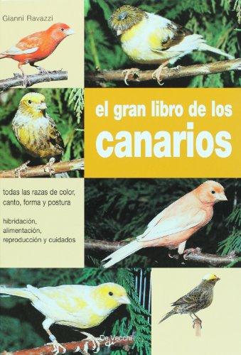9788431529925: El gran libro de los canarios (Spanish Edition)