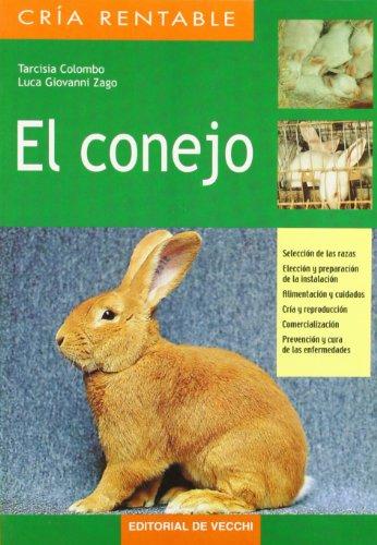9788431530150: El conejo (Spanish Edition)