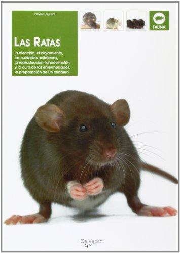 9788431533496: Las Ratas (Spanish Edition)