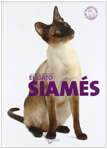 9788431534929: El gato siamés (Animales)