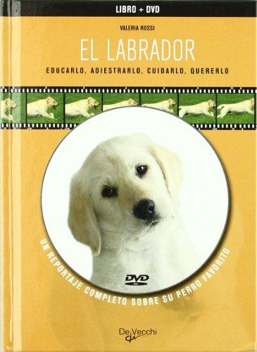 9788431539306: El labrador (libro+dvd) (Animales)