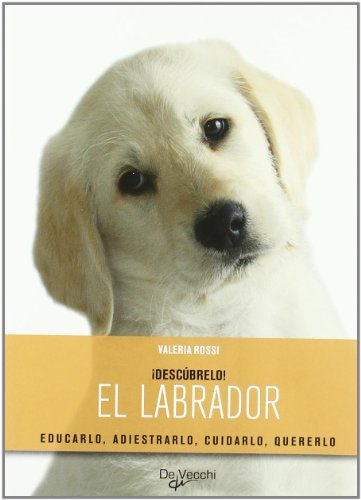 9788431539313: Labrador, el (Descubrelo (de Vecchi))