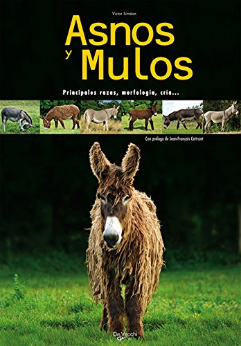 9788431539689: Asnos y Mulas (Spanish Edition)
