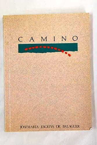 9788432107535: Camino (Spanish Edition)