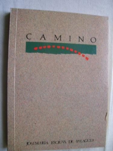 9788432107641: Camino