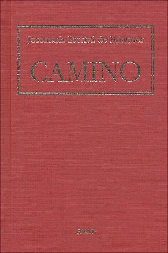 9788432136771: Camino