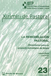 La remodelación pastoral : dinamismos para un: Joaquín Perea González,