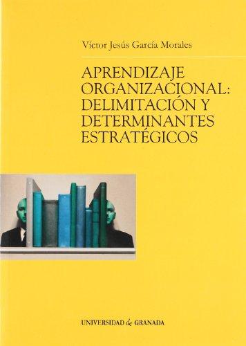 9788433831187: Aprendizaje organizacional: Delimitación y determinantes estratégicos