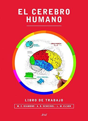 9788434417212: El cerebro humano. Libro de trabajo