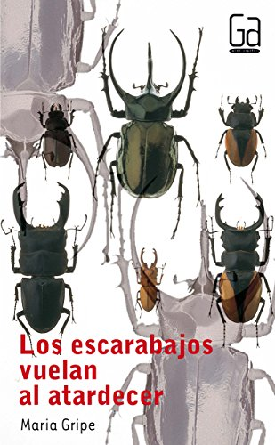 Los escarabajos vuelan al atardecer: Gripe, Maria