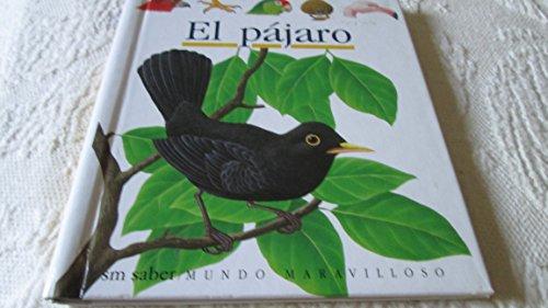 """9788434837263: El Pajaro (Coleccion """"""""Mundo Maravilloso""""""""/First Discovery Series) (Spanish Edition)"""
