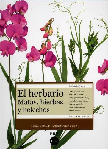 9788437071954: El herbario: matas, hierbas y helechos (Fora de Col·lecció)