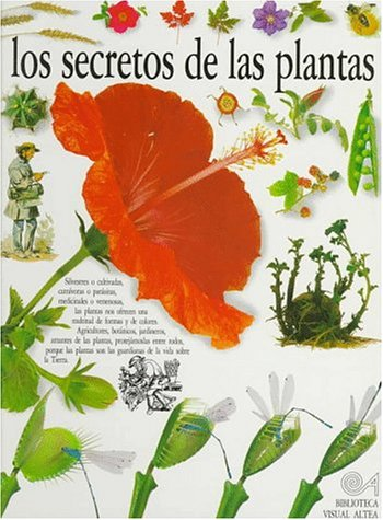 Los Secretos De Las Plantas/the Secrets of Plants (Eyewitness Series in Spanish) (Spanish Edition) (9788437237190) by David Burnie
