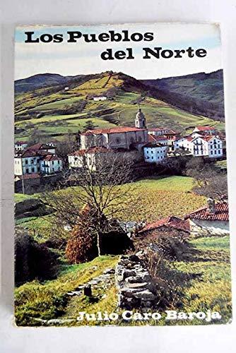 La obra novelistica de Cirilo Villaverde (Spanish Edition): Sanchez, Julio C