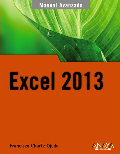 9788441533615: Manual avanzado de Excel 2013 / Excel 2013 Advanced Manual (Spanish Edition)