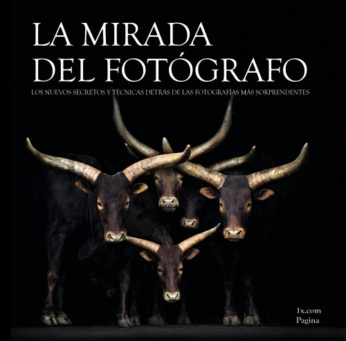 9788441534254: La mirada del fotógrafo / The photographer's eye (Spanish Edition)