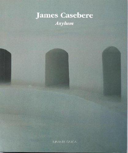 9788445324653 - James and Michael Tarentino Casebere: James Casebere: Asylum - Libro