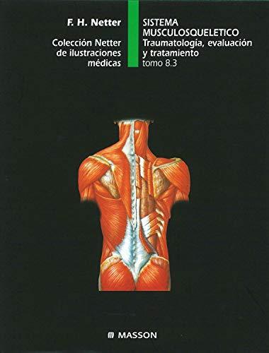 9788445802717: Sistema musculosquelético. Traumatología, evaluación y tratamiento