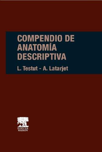 Compendio de anatomia descriptiva (Spanish Edition): Testut, L.; Latarjet,