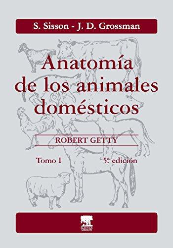 anatomia de los animales domesticos sisson y grossman