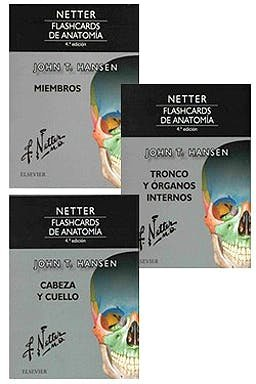 Pack Netter Flashcards De Anatomia By Hansen John T Elsevier