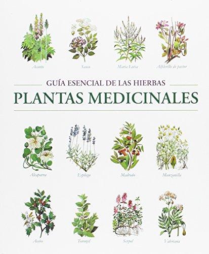 9788445909249: PLANTAS MEDICINALES