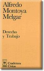 9788447008841: DERECHO Y TRABAJO