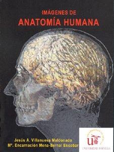 Imágenes de anatomía humana - CD: Jesús Villanueva Maldonado