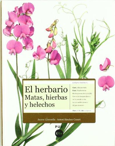9788447532278: HERBARIO, EL -MATAS, HIERBAS Y
