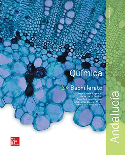 9788448609603: Química - 2º Bachillerato - 9788448609603