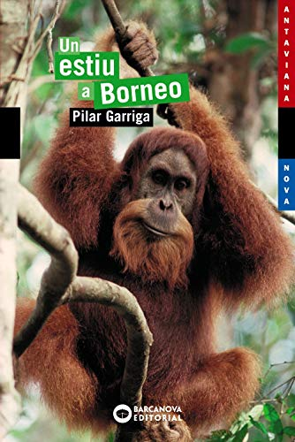 9788448921071: Un estiu a Borneo (Llibres Infantils I Juvenils - Antaviana - Antaviana Blava)