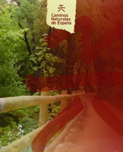 9788449111372: Caminos naturales de España