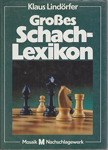 9788449980800: Großes Schachlexikon - Geschichte, Theorie und Spielpraxis von A-Z.