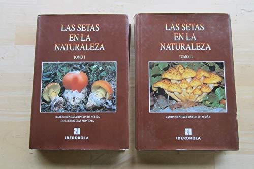 9788460507925: Las setas en la naturaleza (Spanish Edition)