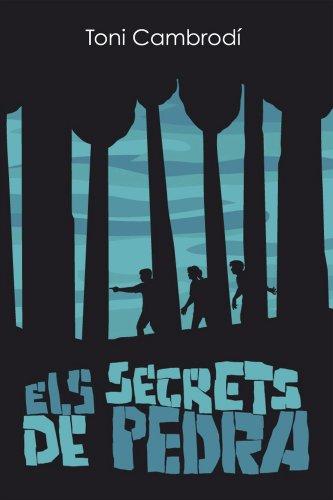 9788461672103: Els secrets de pedra
