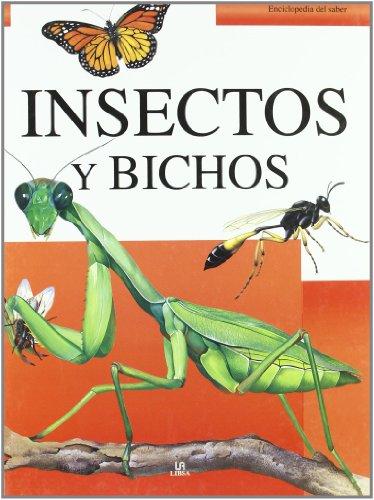 9788466220378: Insectos y bichos / Mini Beasts (Enciclopedia Del Saber / Encyclopedia of Knowledge) (Spanish Edition)