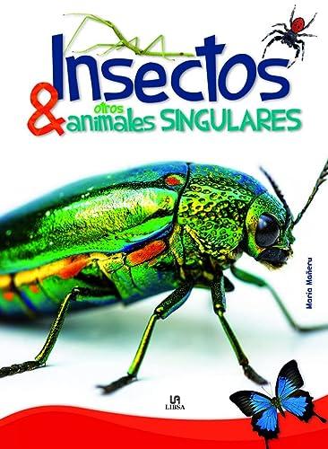 Insectos y otros animales singulares (Spanish Edition): MarÃa Maneru