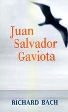 Juan Salvador gaviota (Punto De Lectura): Richard Bach