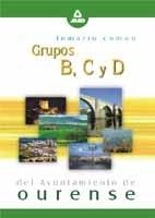9788466519113: Grupos b,c y d ayuntamiento de ourense. Temario comun