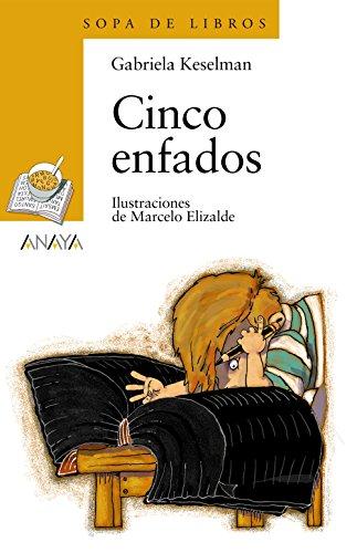 Cinco Enfados (Paperback): Gabriela Keselman